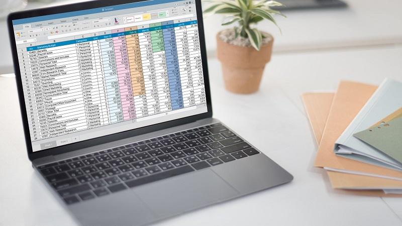 spreadsheet format
